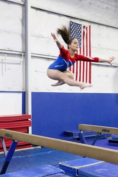 Girls Gymnastics picture